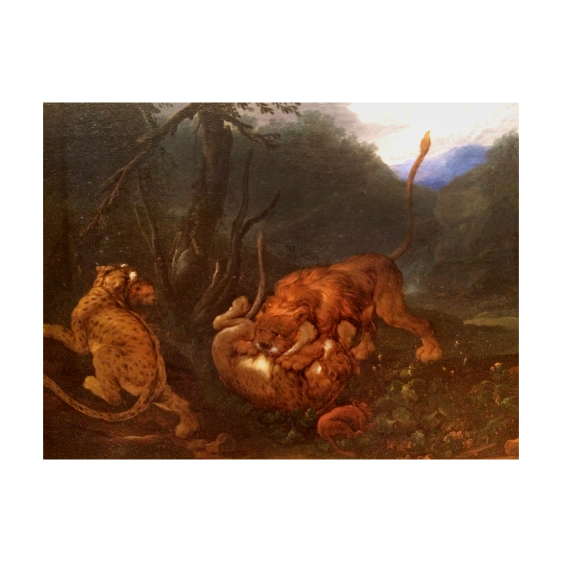 17th century Germanic School Oil Painting Animals at play