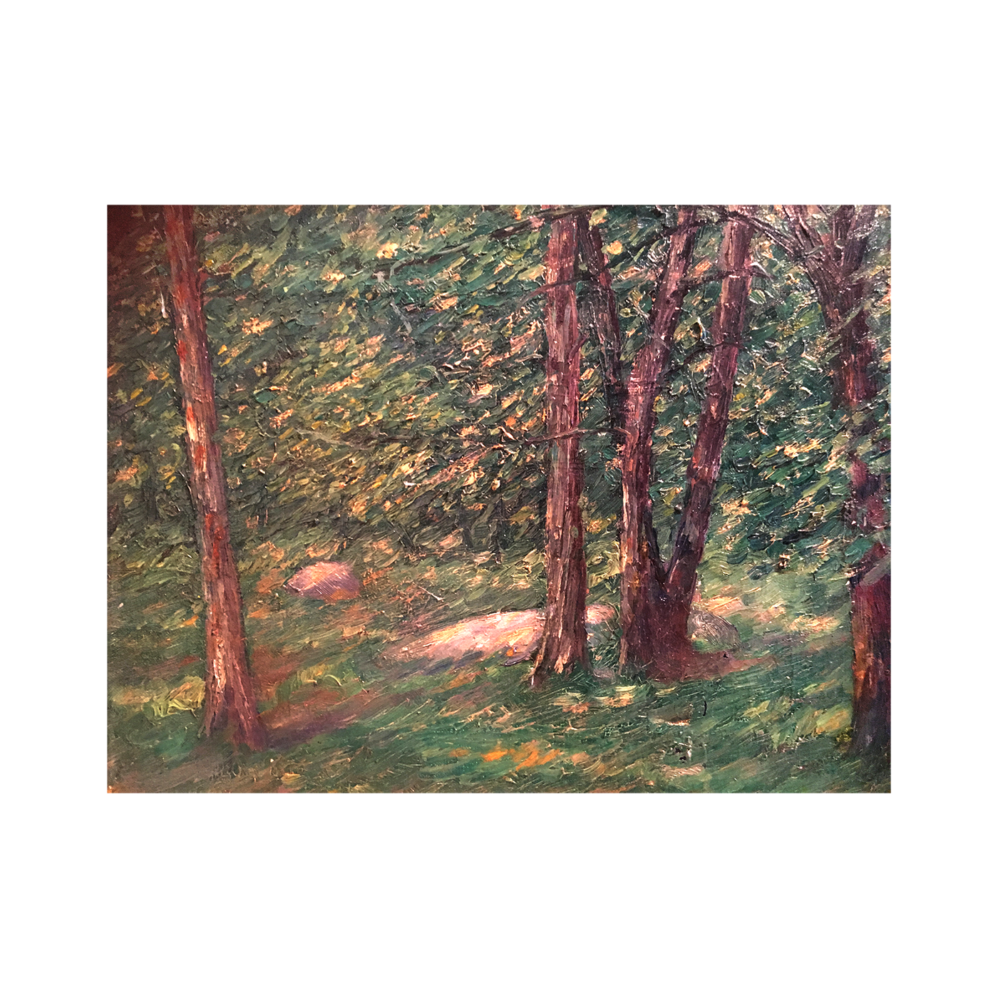"Frank Fogarty [1887-] New York illustrator impressionist painting""Forest Light"" 1920"