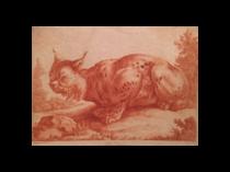 """Coryn Boel [1620-1668] Flemish etching """"Chat Turc"""""""
