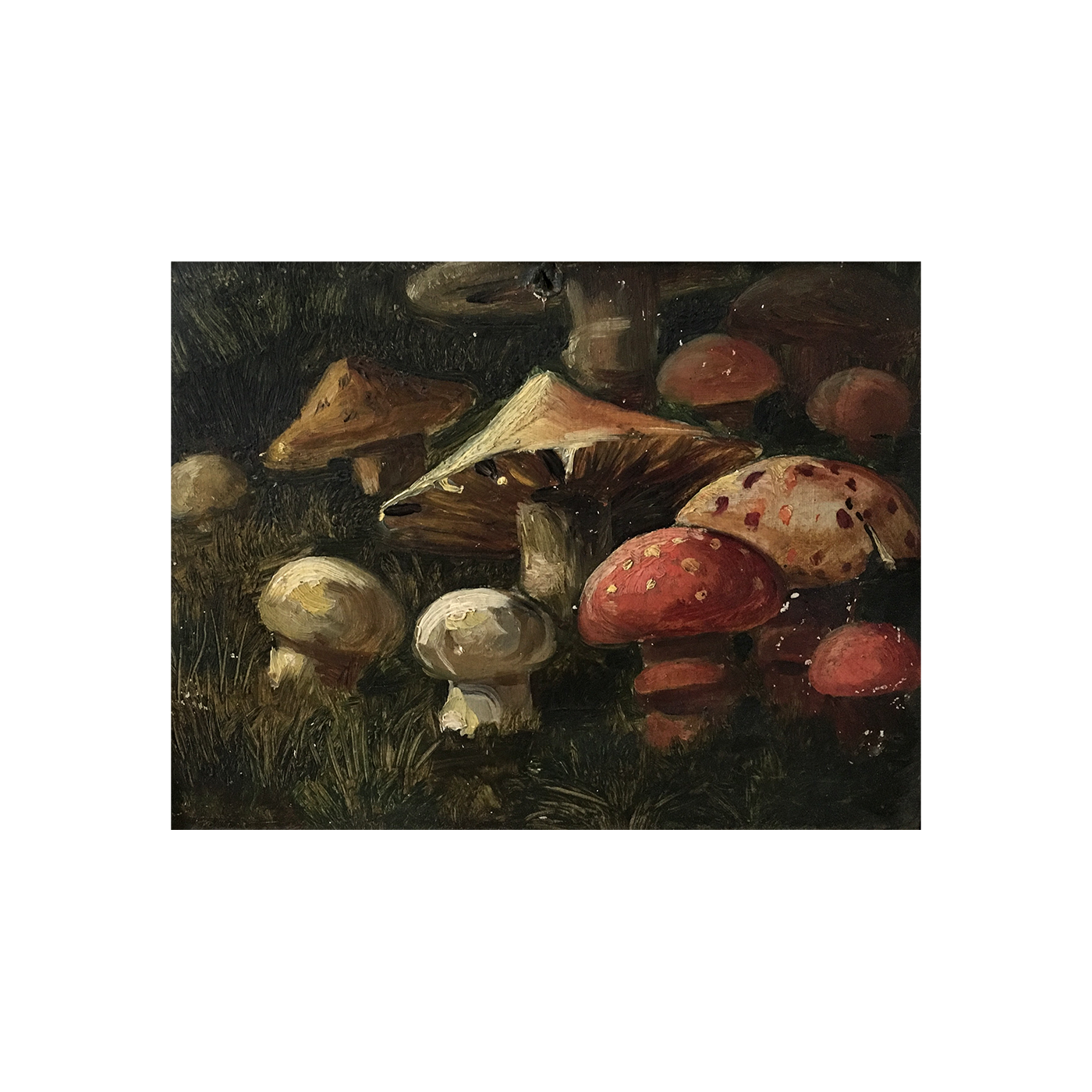 "[unattributed] American school ""Mushrooms in the Forest"" 1893 oil on board 5 1/2 x 7 1/2 inches"