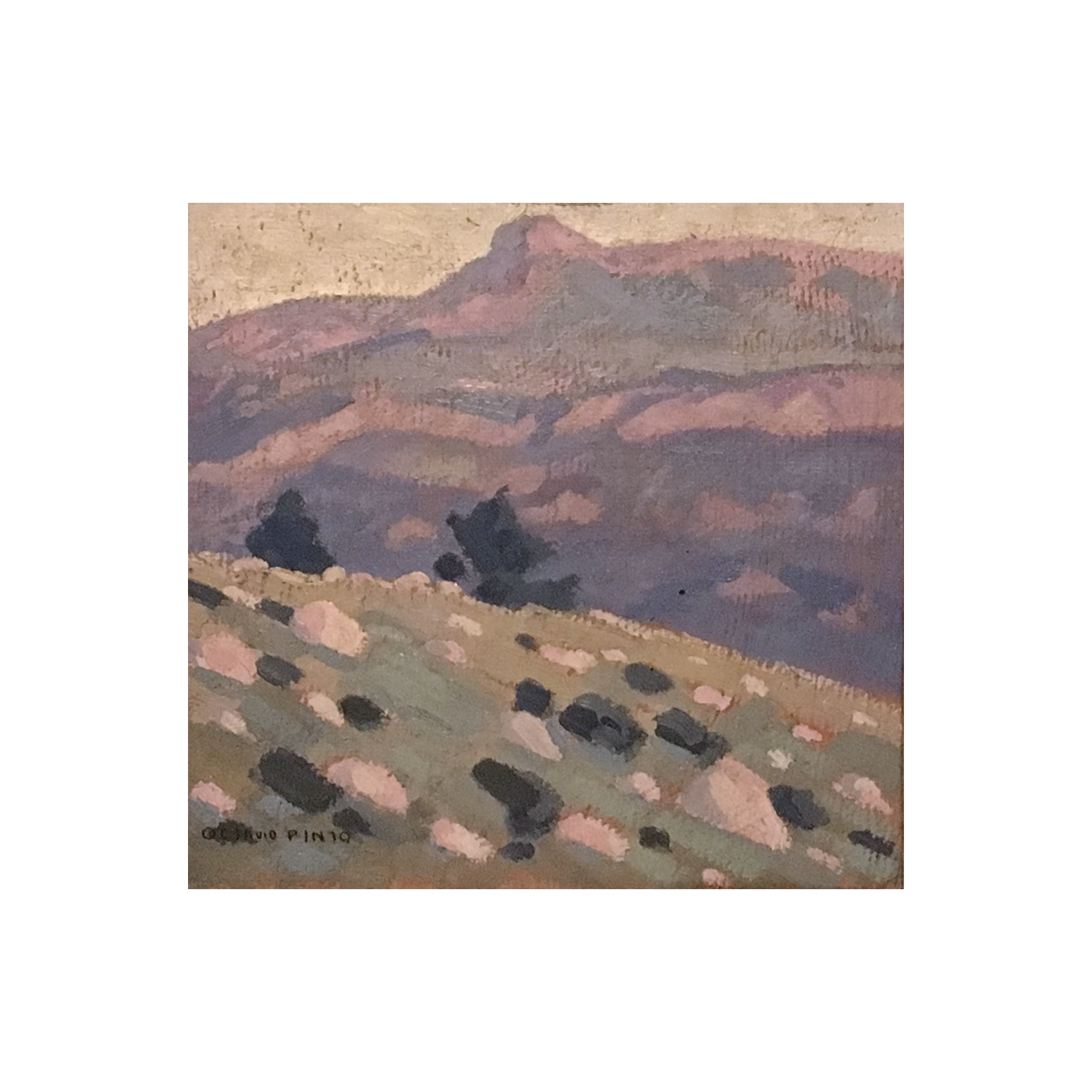 """Octavio Pinto [ 1890 - 1941] Argentina painting """"Landscape in the wilderness"""" ca 1920"""