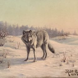 "Robert Lindneux [1871-1970] American ""The Lone Wolf"" 1916"