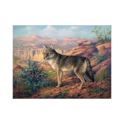 Robert Lindneux [1871-1970] : Colorado wolf, 1928.
