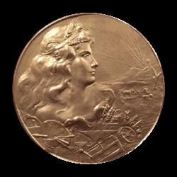 [unattributed] bronze commemorative medal : Esposizone Nazionale Estiva Livorno, 1909.