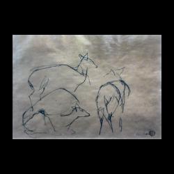 Ben Shahn [1896-1969] American : Three dears, ca.1940s.